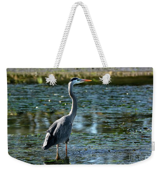 Great Blue Heron Catching The Light Weekender Tote Bag