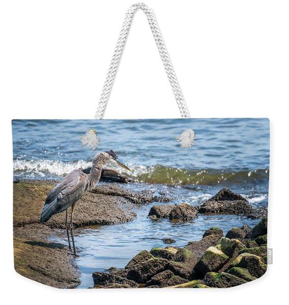 Great Blue Heron Fishing On The Chesapeake Bay Weekender Tote Bag