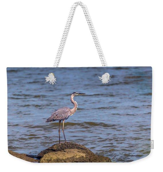 Great Blue Heron Gaze Weekender Tote Bag