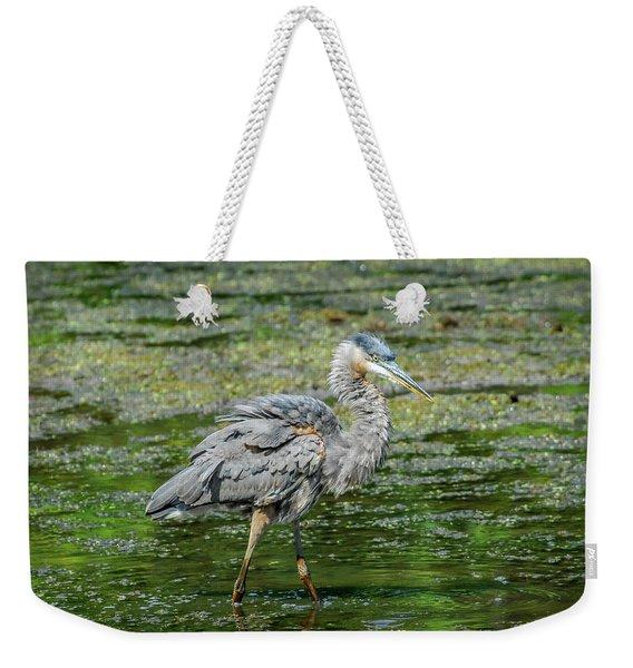 Great Blue Heron In Pond Weekender Tote Bag