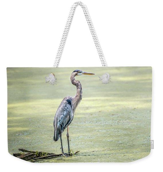 Great Blue Heron Standing In A Marsh Weekender Tote Bag