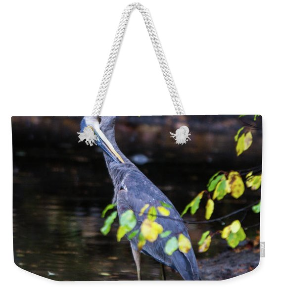 Great Blue Heron With An Itch Weekender Tote Bag