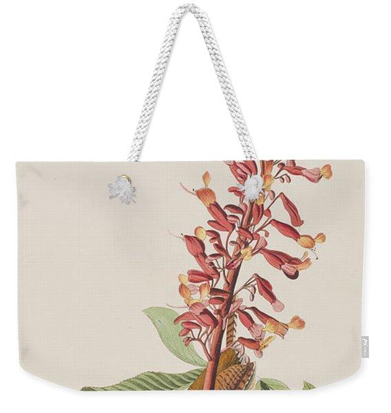 Great Carolina Wren Weekender Tote Bag