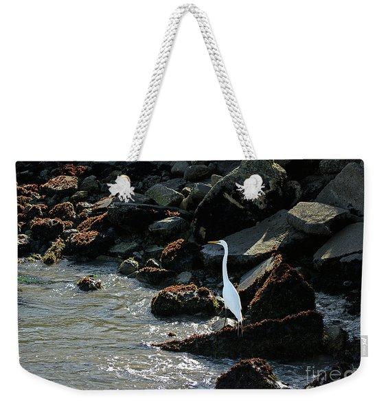 Great Egret On Sunny Seaside Rocks Weekender Tote Bag