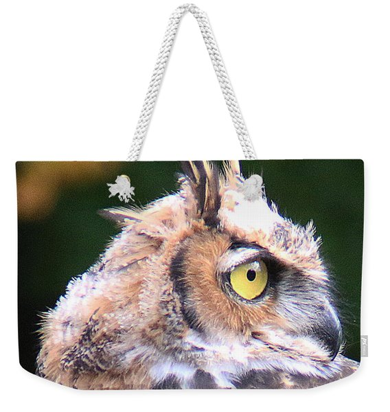 Weekender Tote Bag featuring the photograph Great Horned Owl Portrait by William Selander
