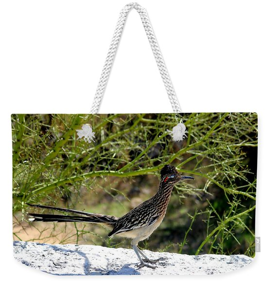 Greater Road Runner Weekender Tote Bag