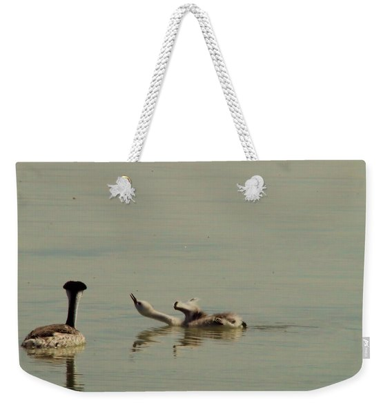 Grebe Chick In All Its Grace Weekender Tote Bag