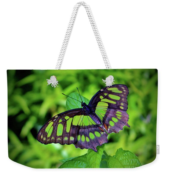 Green And Black Butterfly Weekender Tote Bag