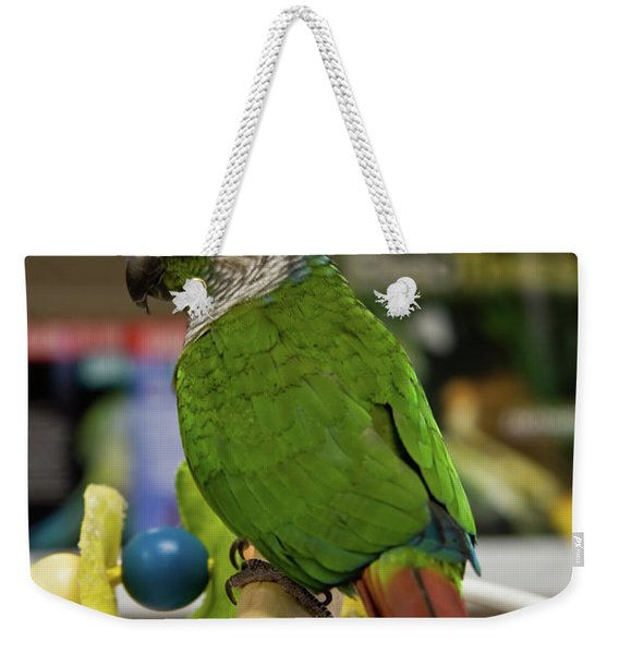 Green Cheek Conure Weekender Tote Bag