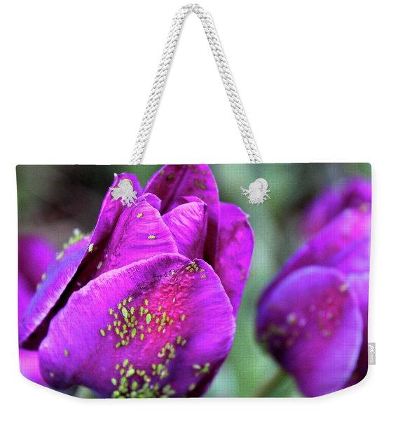 Aphids On Purple Tulips Weekender Tote Bag