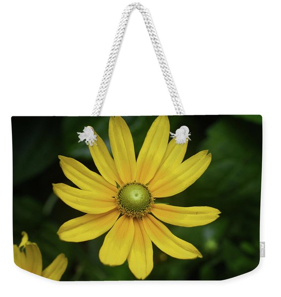 Weekender Tote Bag featuring the photograph Green Eyed Daisy by Sally Sperry