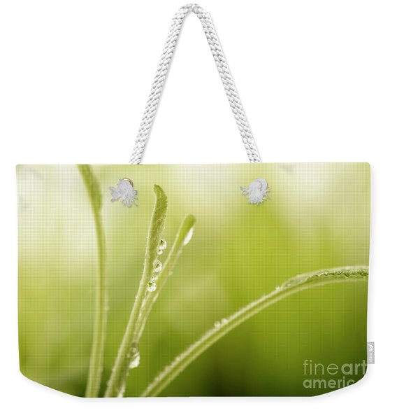 Green Plant With Water Drops Weekender Tote Bag