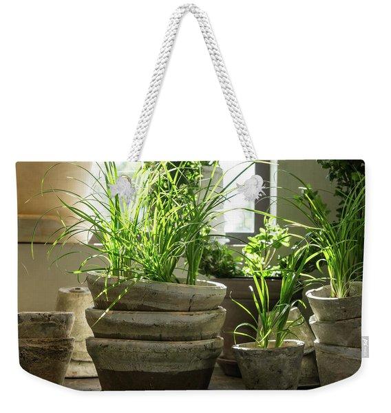 Green Plants In Old Clay Pots Weekender Tote Bag