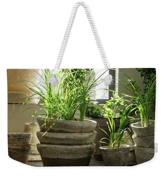 Green Plants In Old Clay Pots Weekender Tote Bag