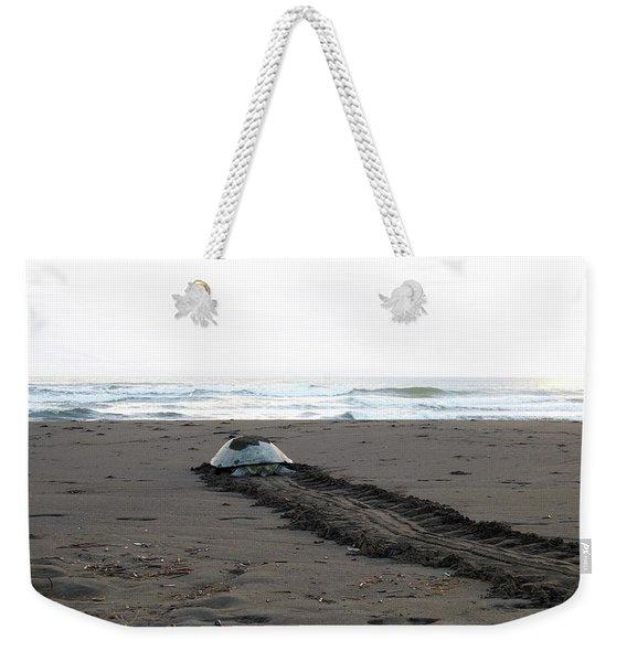 Green Sea Turtle Returning To Sea Weekender Tote Bag