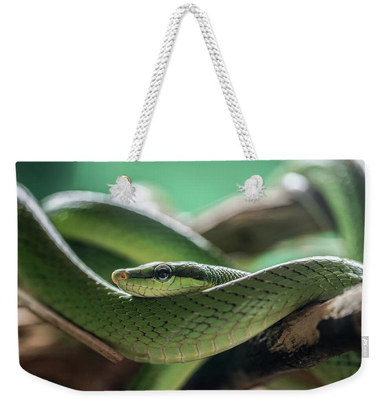 Green Snake On The Branch Weekender Tote Bag