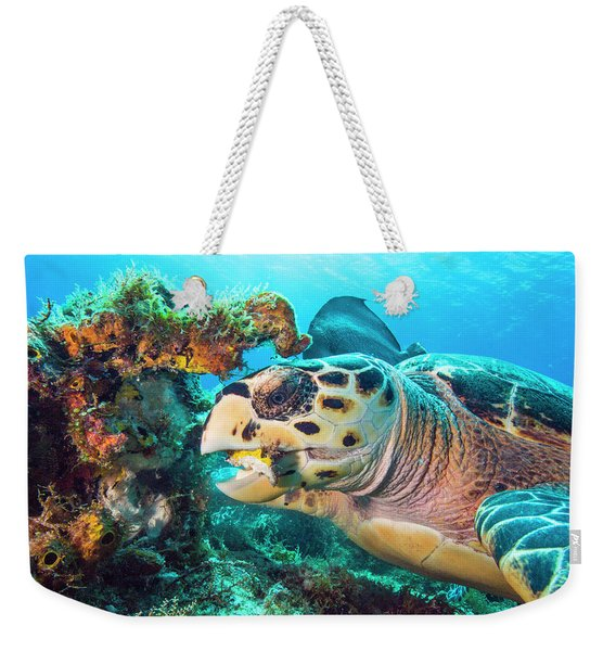 Green Turtle Dining Weekender Tote Bag