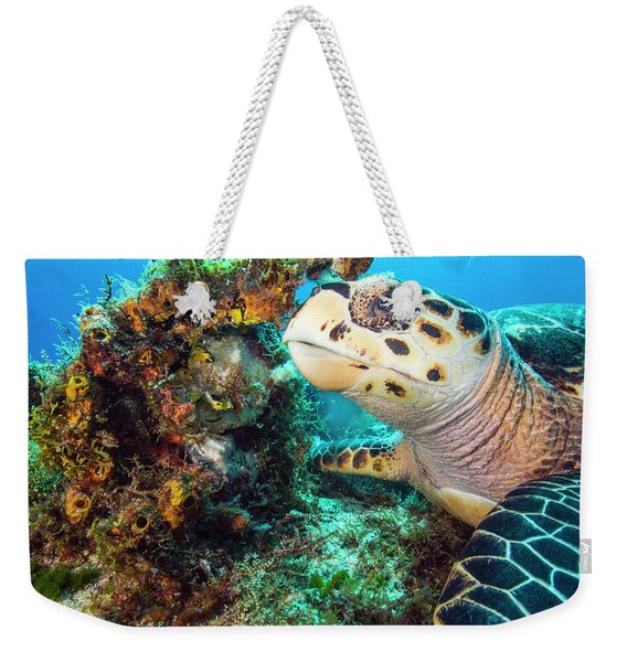 Green Turtle Profile Weekender Tote Bag