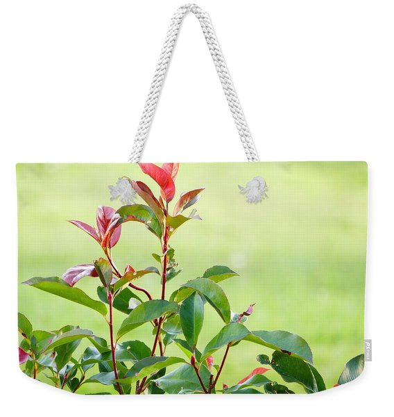 Greenery And Red Weekender Tote Bag
