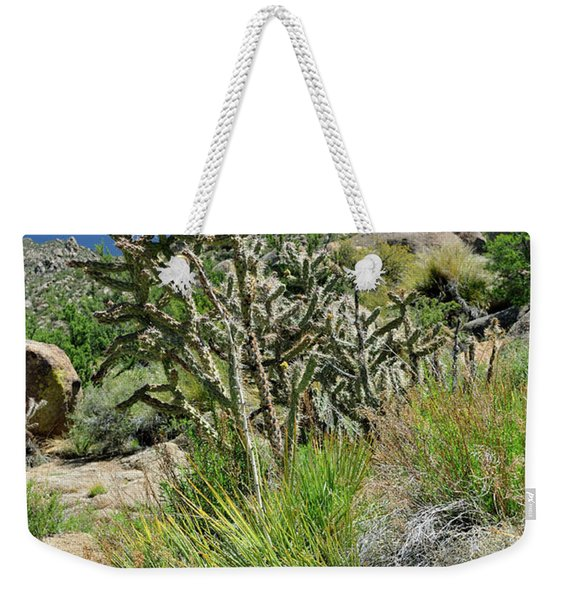 Weekender Tote Bag featuring the photograph Greening Of The High Desert by Ron Cline