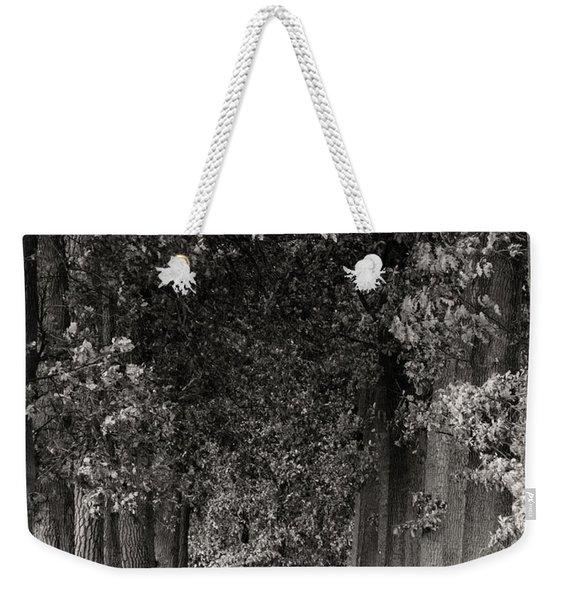 Greeted By Trees Weekender Tote Bag