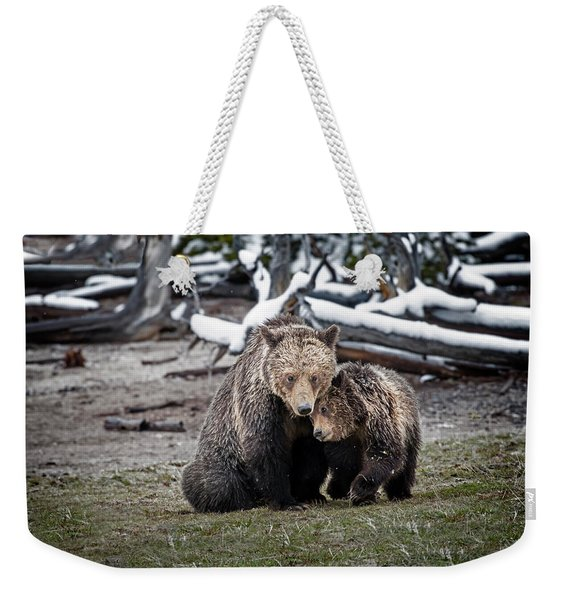 Grizzly Cub Cuddling With Mother Weekender Tote Bag