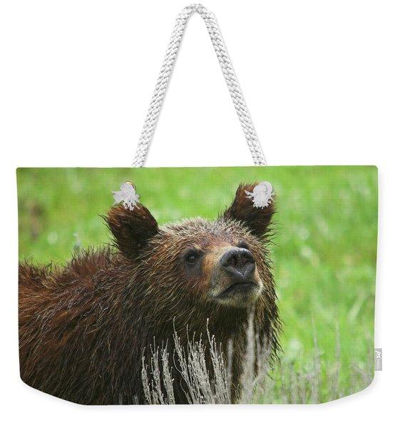 Grizzly Cub Weekender Tote Bag