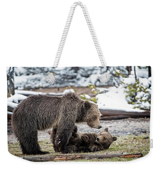Grizzly Cub With Mother Weekender Tote Bag