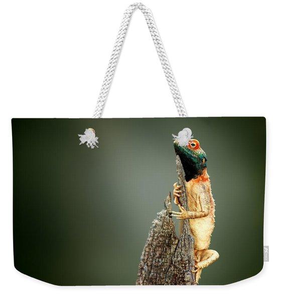 Ground Agama Sunbathing Weekender Tote Bag