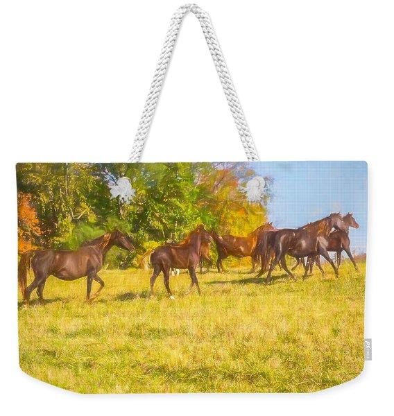 Group Of Morgan Horses Trotting Through Autumn Pasture. Weekender Tote Bag