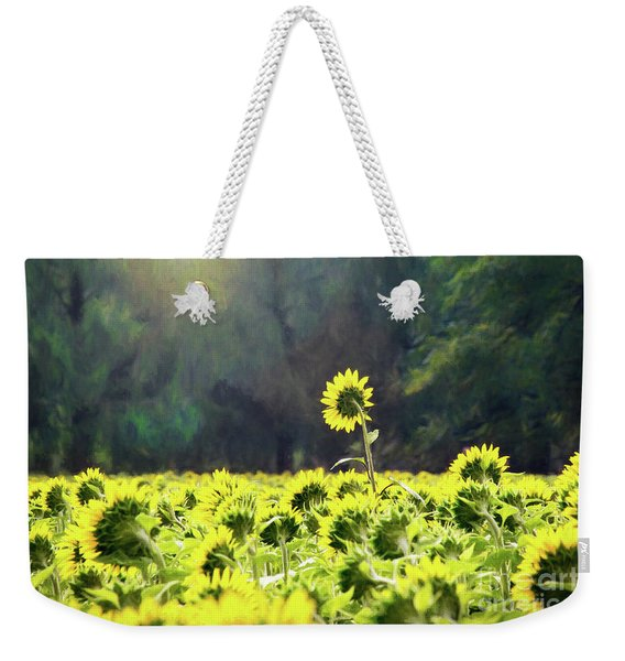 Growing Tall Toward The Sun Weekender Tote Bag