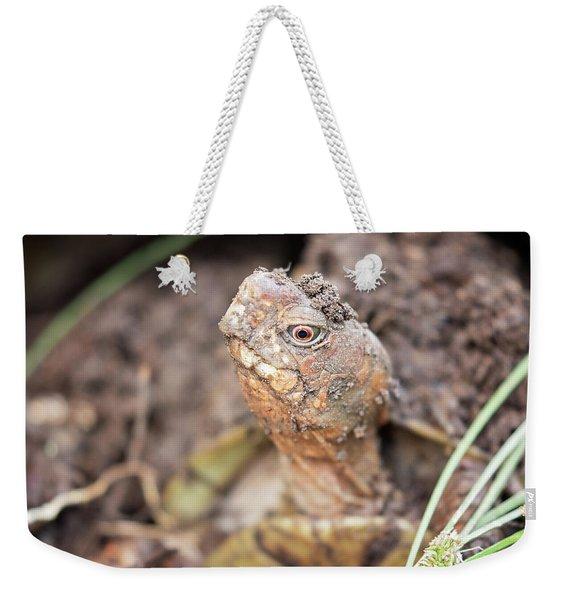 Grumpy Weekender Tote Bag