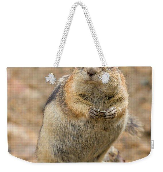 Grumpy Squirrel Weekender Tote Bag