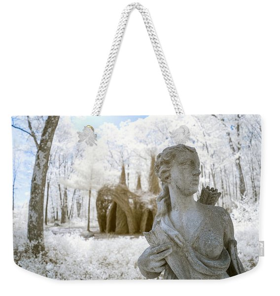 Weekender Tote Bag featuring the photograph Guarding The Fort 2 by Brian Hale