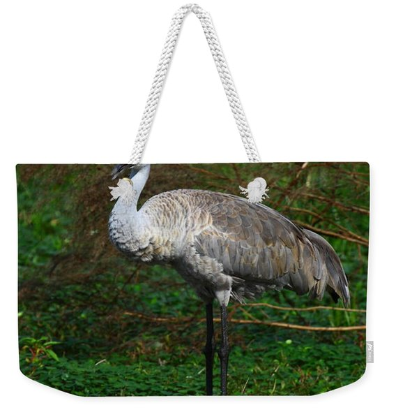 Guarding The Nest Weekender Tote Bag