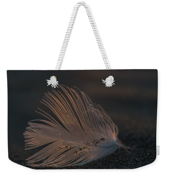 Gull Feather On A Beach Weekender Tote Bag