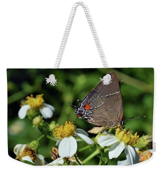 Hairstreak Butterfly Weekender Tote Bag