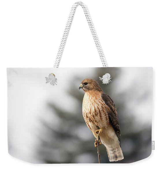 Hal The Hybrid Portrait 1 Weekender Tote Bag