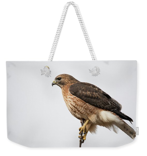 Hal The Hybrid Portrait 2 Weekender Tote Bag