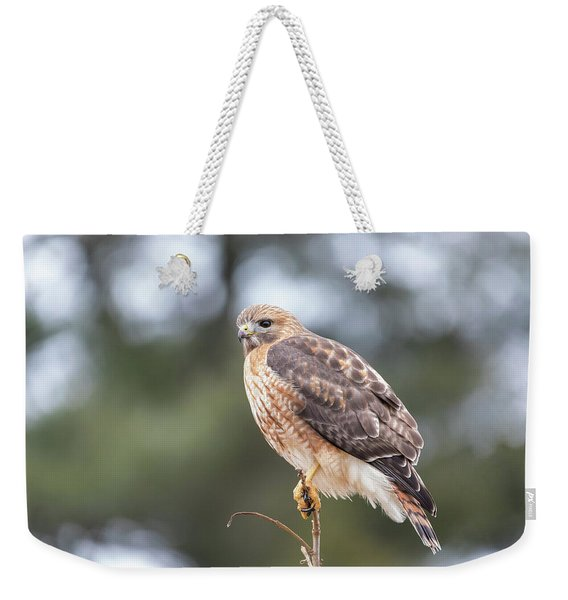 Hal The Hybrid Portrait 3 Weekender Tote Bag