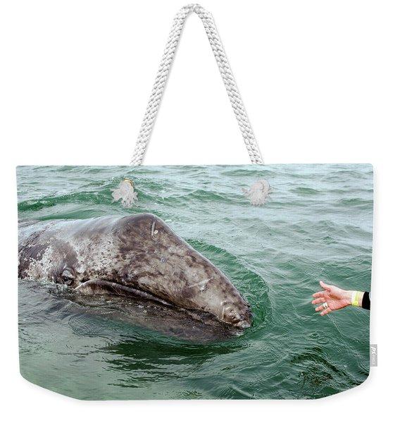 Hand Across The Waters Weekender Tote Bag
