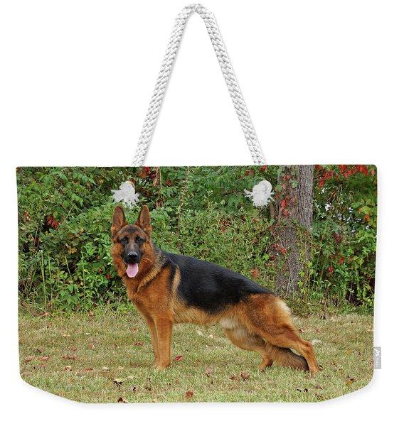 Handsome Rocco Weekender Tote Bag