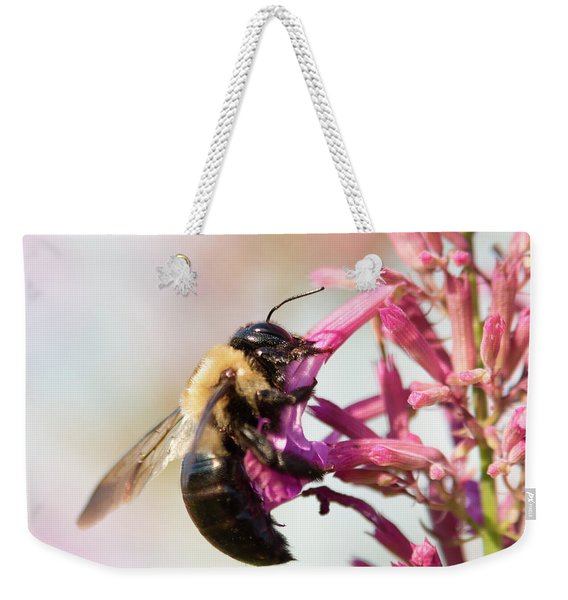 Weekender Tote Bag featuring the photograph Hang In There by Brian Hale