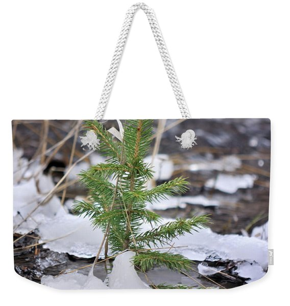 Weekender Tote Bag featuring the photograph Hanging In There by Ron Cline