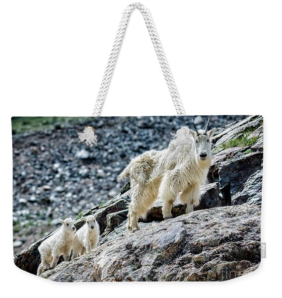 Hanging With The Kids Weekender Tote Bag