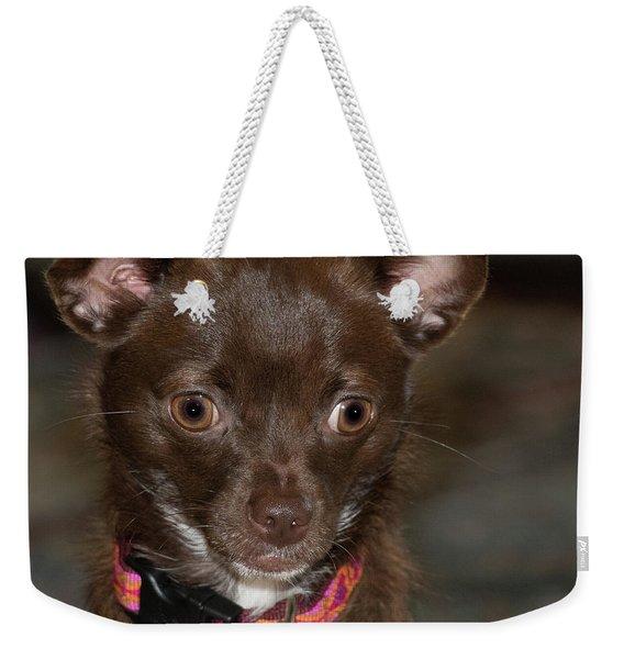Hannah 2 Weekender Tote Bag