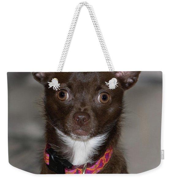 Hannah 3 Weekender Tote Bag