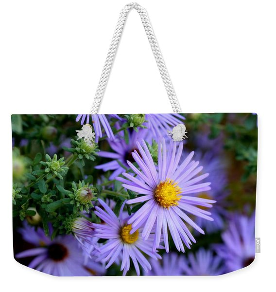Hardy Blue Aster Flowers Weekender Tote Bag