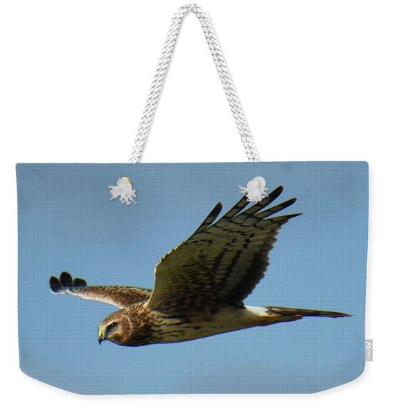 Harrier In Flight Weekender Tote Bag