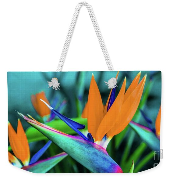 Hawaii Bird Of Paradise Flowers Weekender Tote Bag